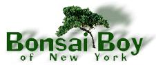 Free Bonsai Care Service