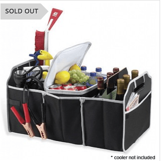 Buy 6 or More Collapsible Trunk Organizer for $4 Each Plus Free Shipping