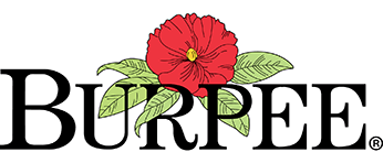 Burpee Coupon Codes