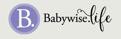 Babywise Life